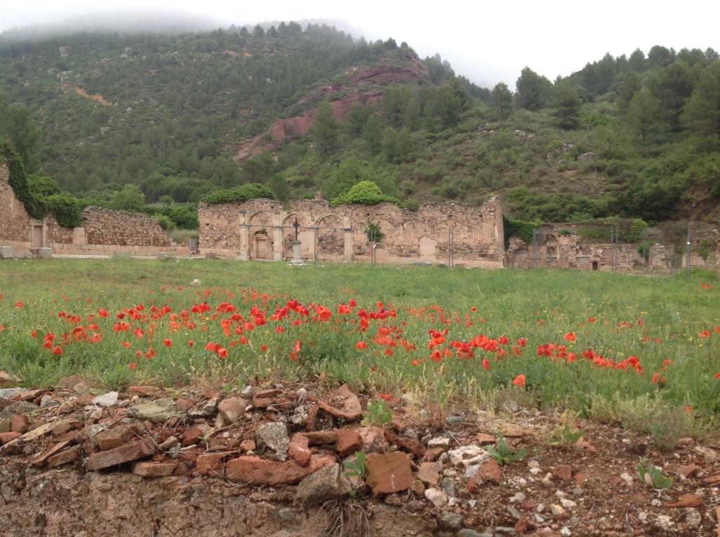 El Priorat florit