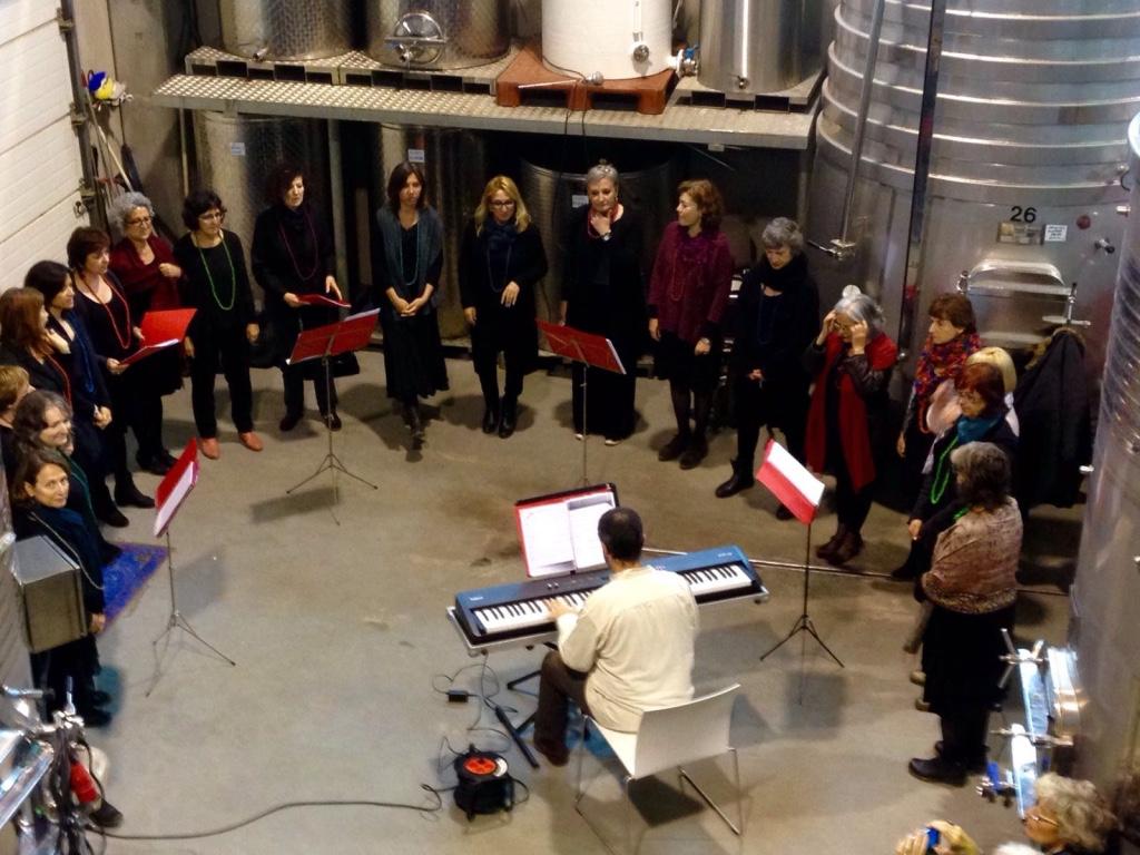 Concert al celler Arché Pagès